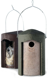 Cleaning Bird Nest Boxes