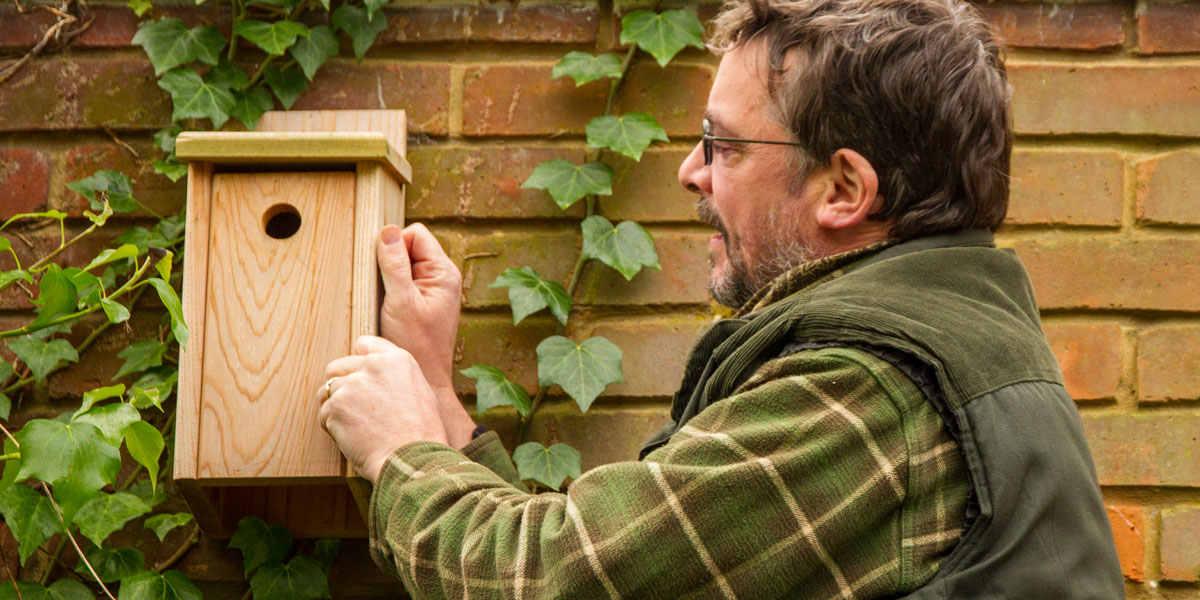 Where to site bird nest boxes