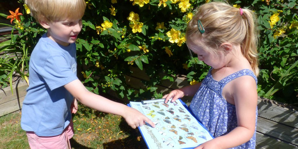 How to become a wildlife expert in your own garden! What to spot and where to find it