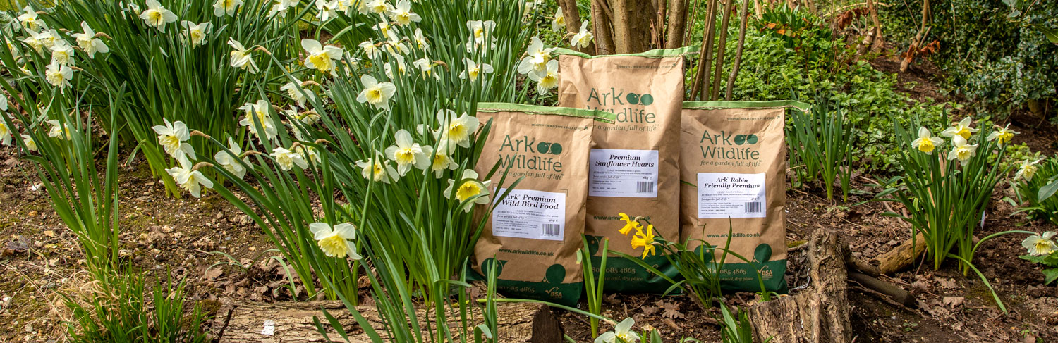 Bird Food Deal of the Month